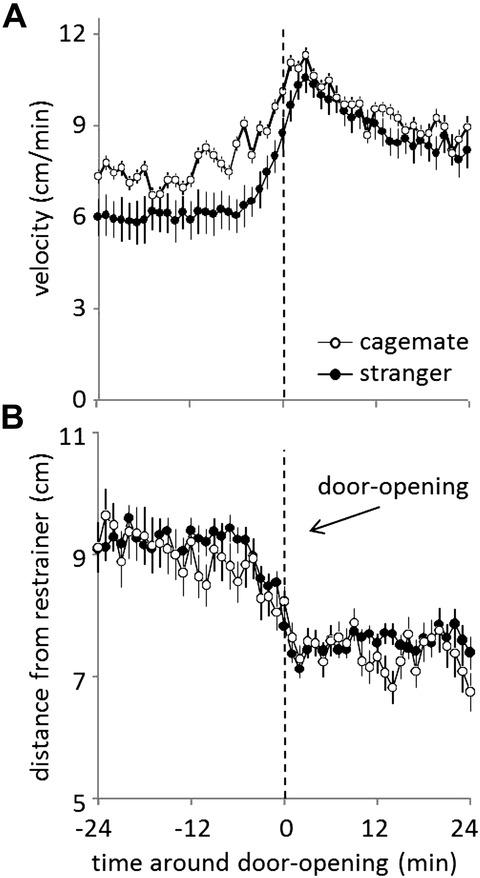 Figure 7.