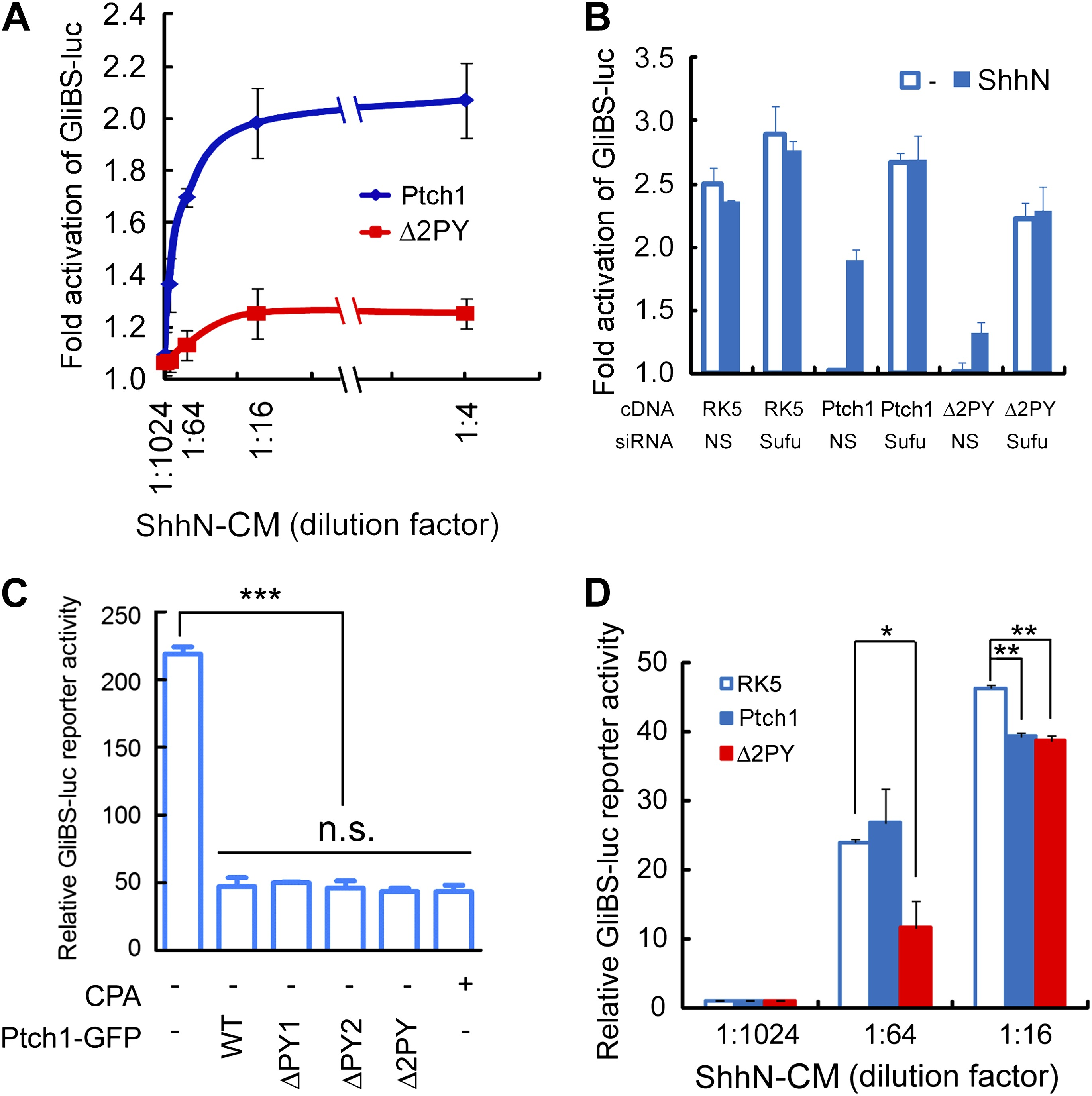 Requirement Of Smurf Mediated Endocytosis Patched1 In Sonic 555 Tester Circuit The Ppxy Motifs Are Required For Eliciting Both Cell And Non Autonomous Transcriptional Responses To Shh