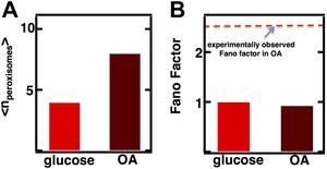 Figure 3—figure supplement 4.