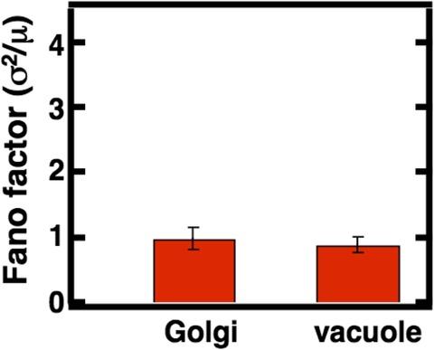 Figure 3—figure supplement 5.