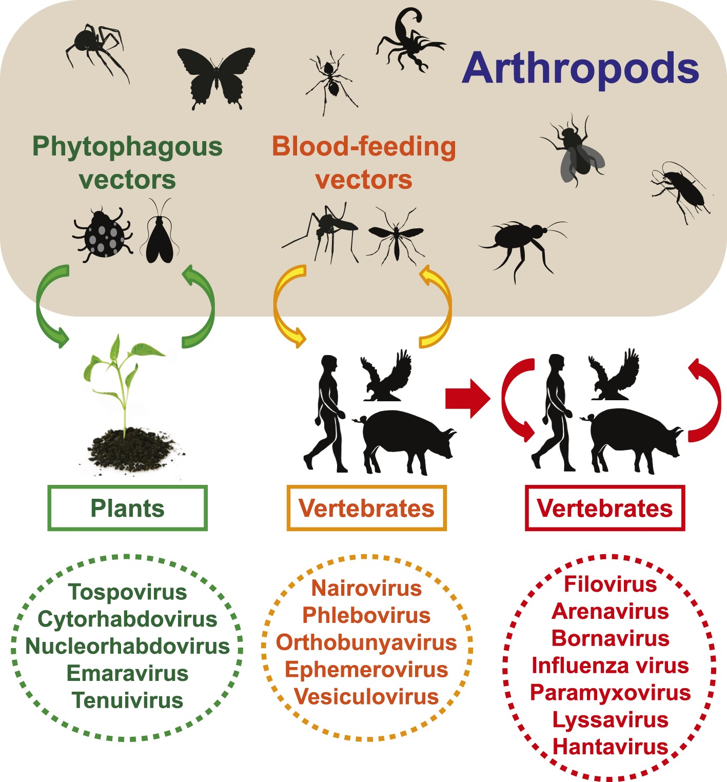 pdf plant pathology concepts and