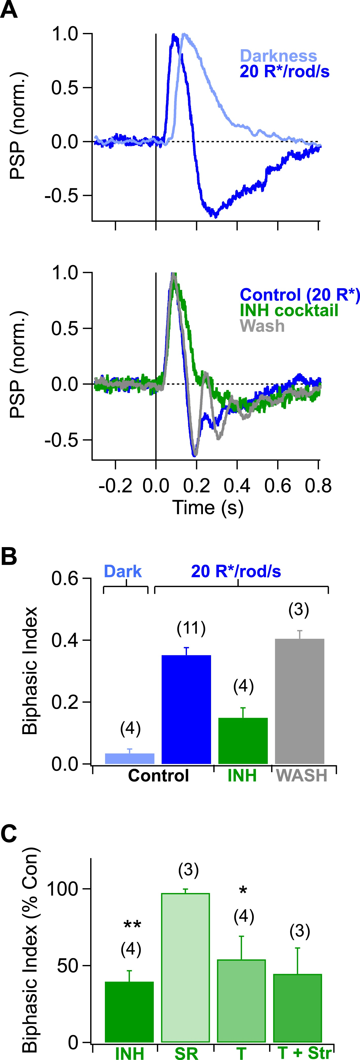 A simple retinal mechanism contributes to perceptual interactions a simple retinal mechanism contributes to perceptual interactions between rod and cone mediated responses in primates elife lens ccuart Gallery