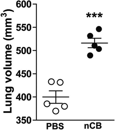 Figure 2—figure supplement 4.