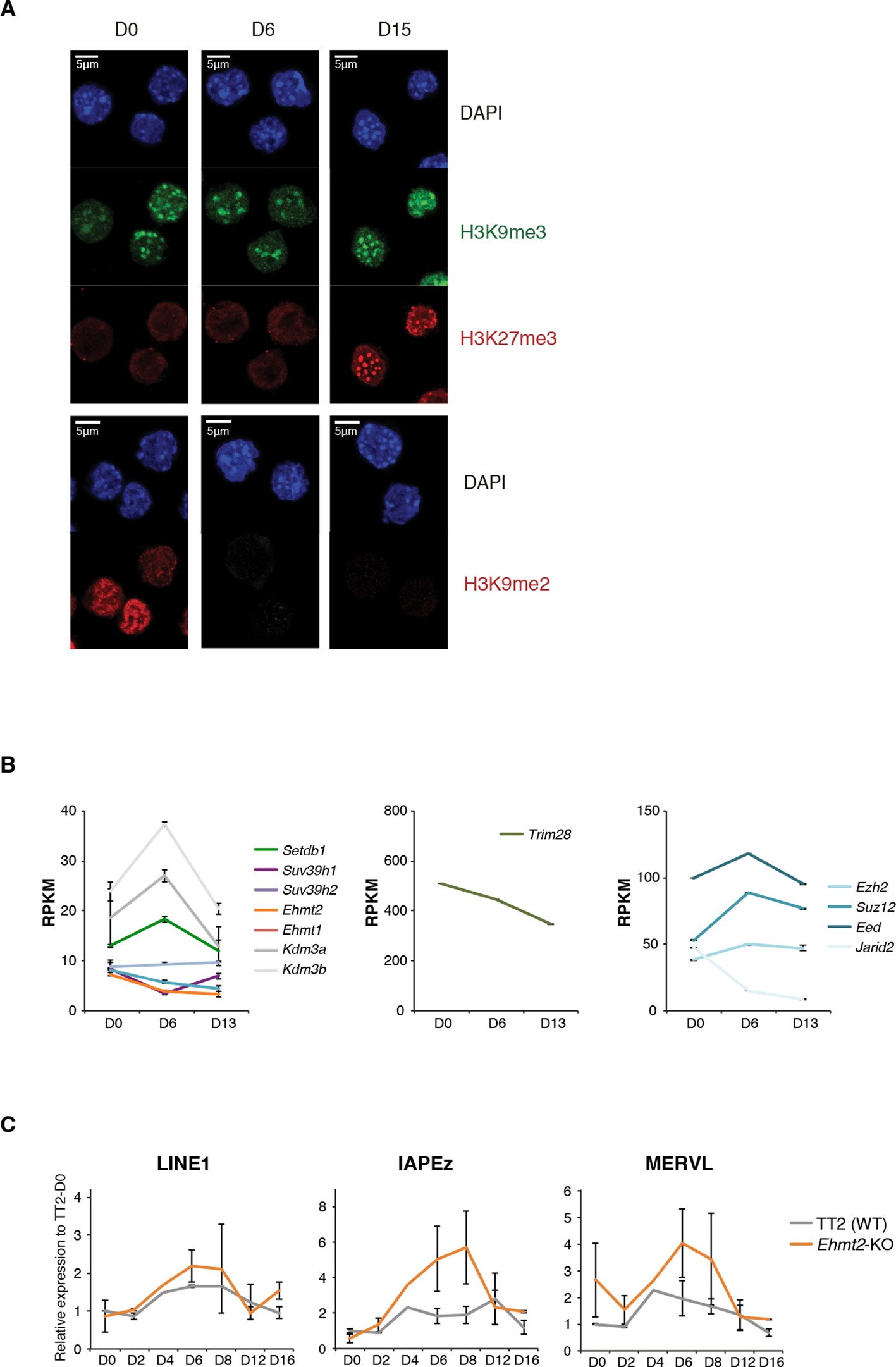 an epigenetic switch ensures transposon repression upon dynamic  an epigenetic switch ensures transposon repression upon dynamic loss of dna methylation in embryonic stem cells elife lens