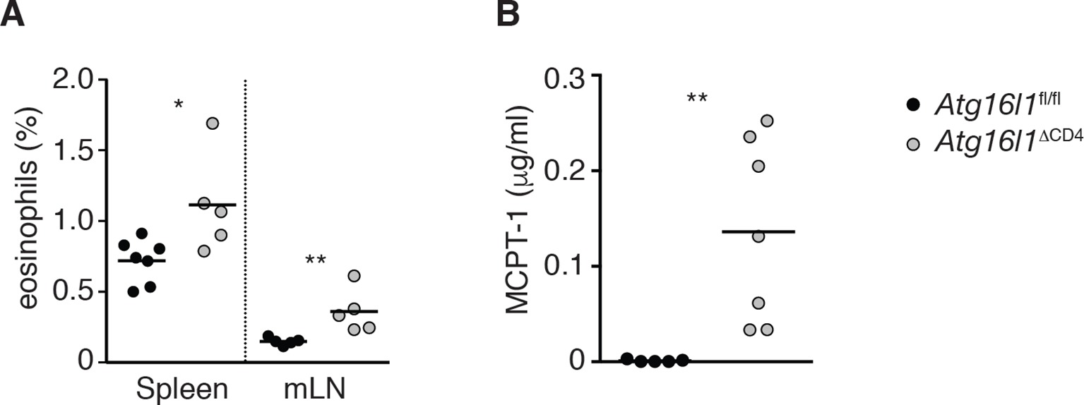 The Autophagy Gene Atg16l1 Differentially Regulates Treg And Th2 Ic 555 Fun With Timer Vidnis Cells To Control Intestinal Inflammation Elife Lens