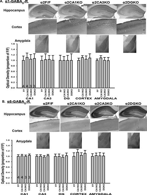 Figure 1—figure supplement 2.