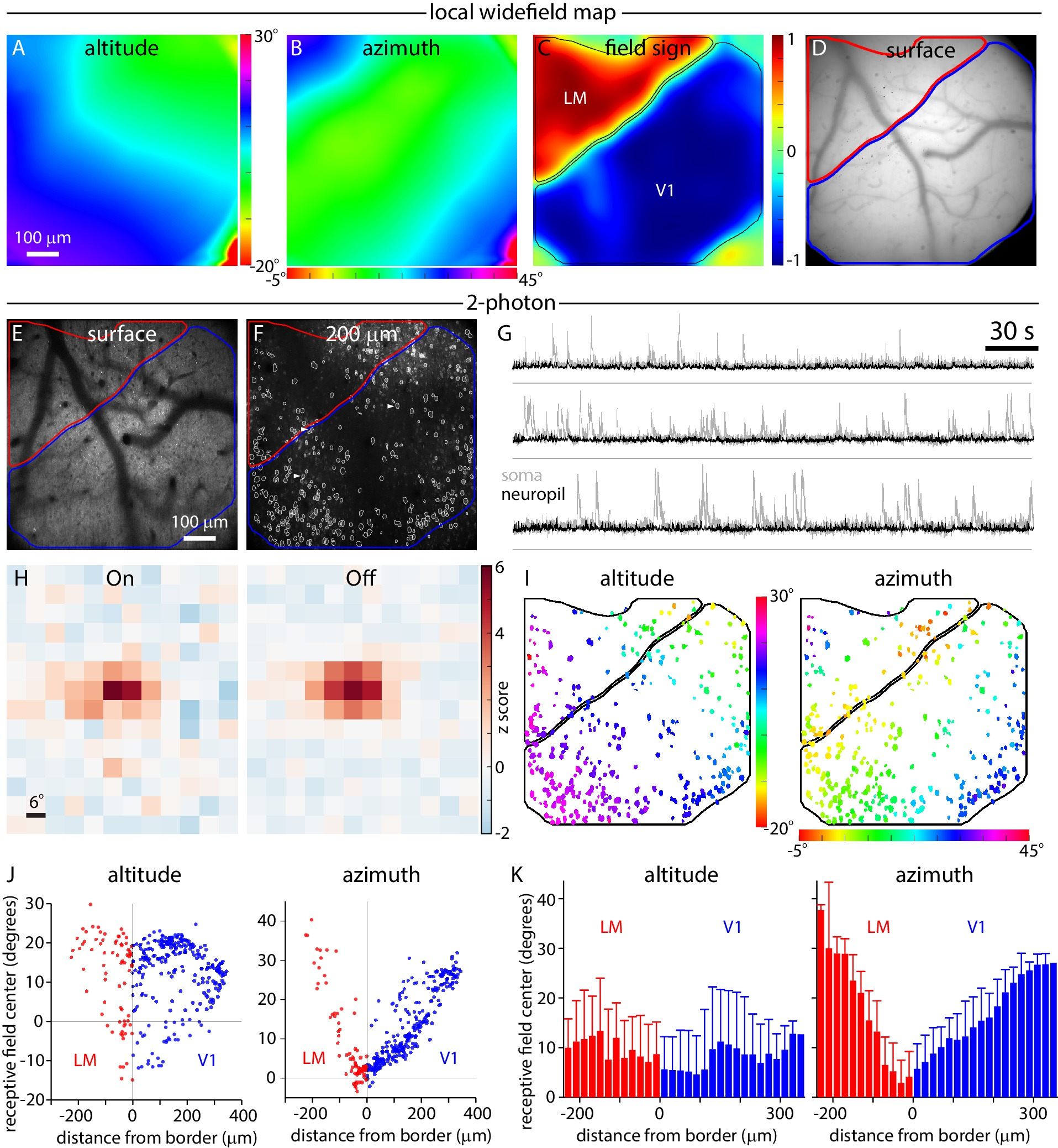 An extended retinotopic map of mouse cortex | eLife Lens