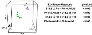 Figure 8—figure supplement 2.