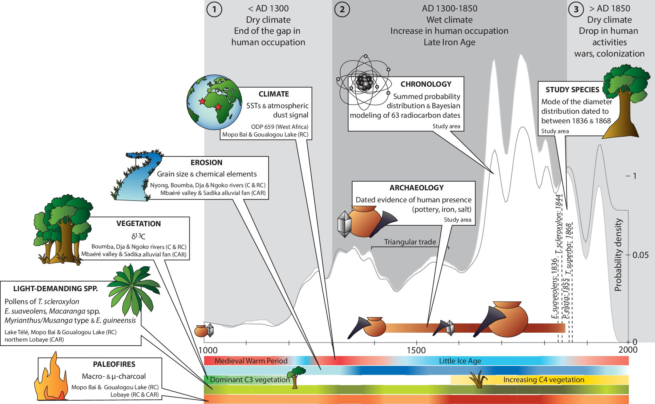 Present day central african forest is a legacy of the 19th century chronology of paleoenvironmental changes and human activities in the sangha river interval biocorpaavc