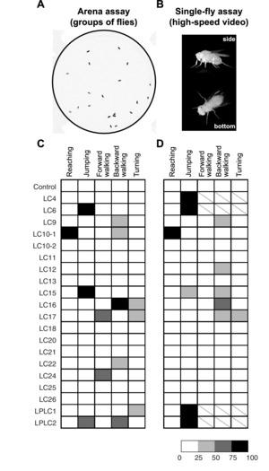 Figure 8.
