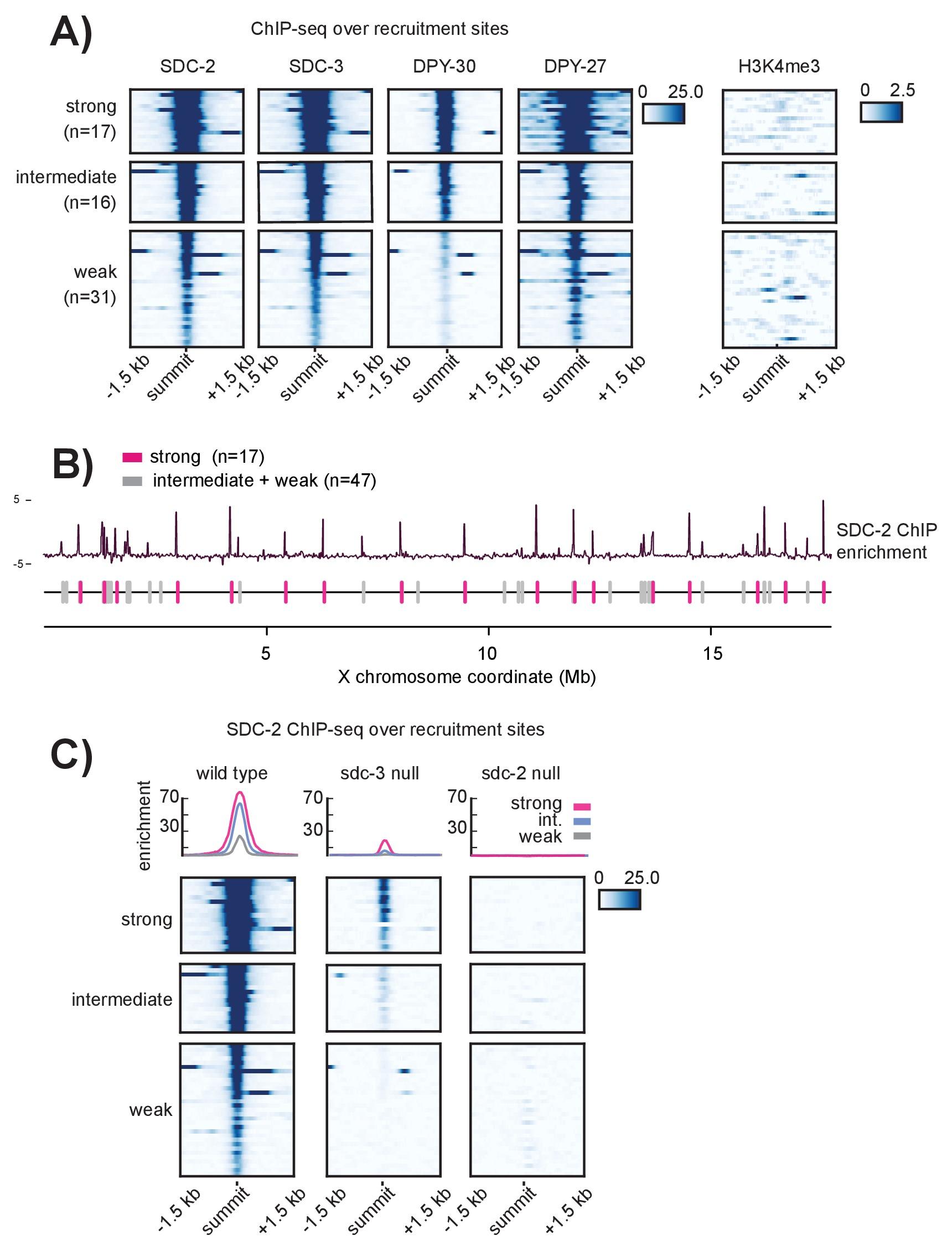 Cooperation between a hierarchical set of recruitment sites targets recruitment sites on the x chromosome are hierarchical ccuart Image collections