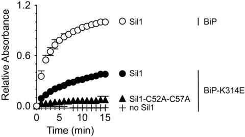 Figure 2—figure supplement 1.