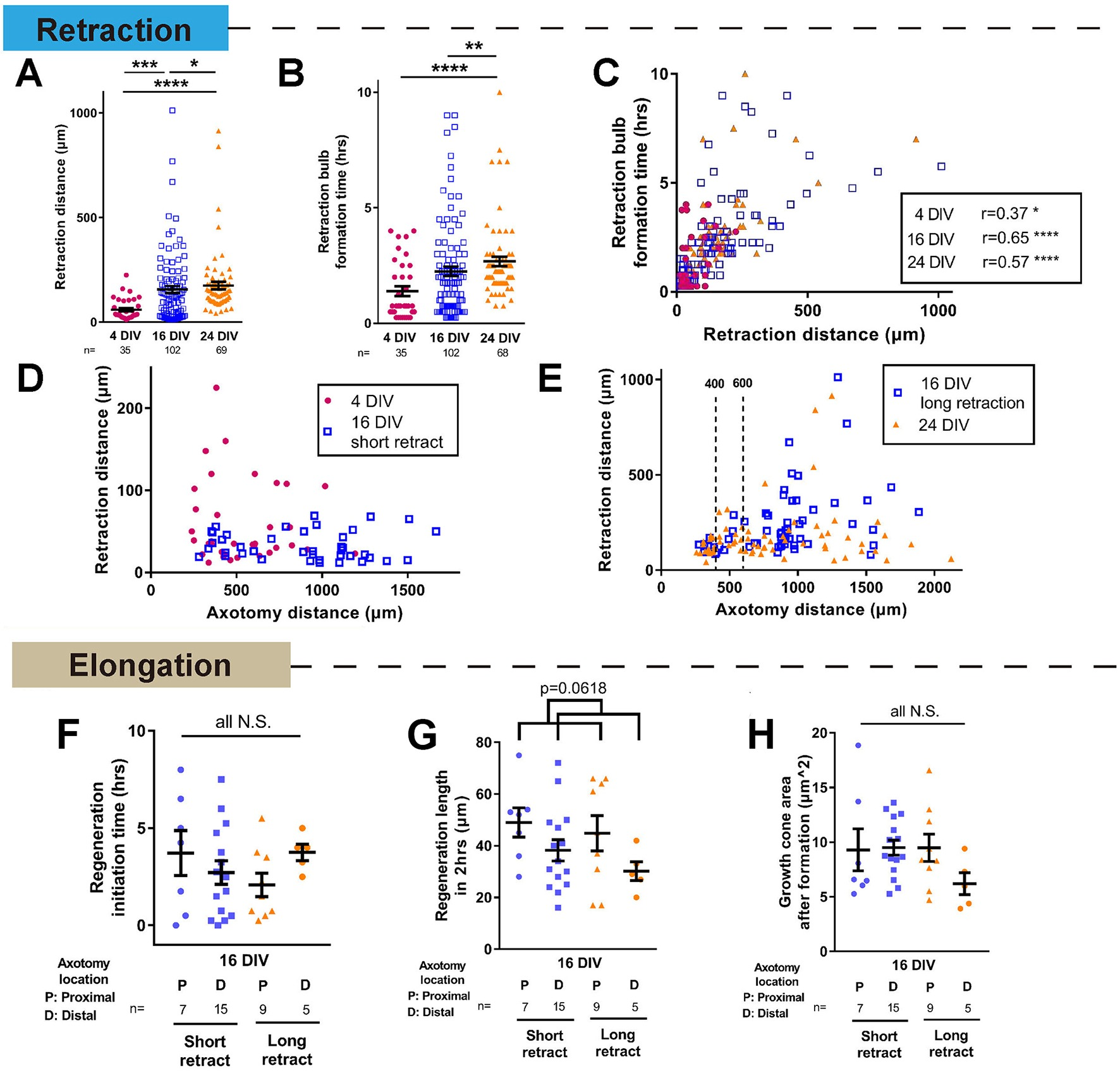 Selective rab11 transport and the intrinsic regenerative ability of ...