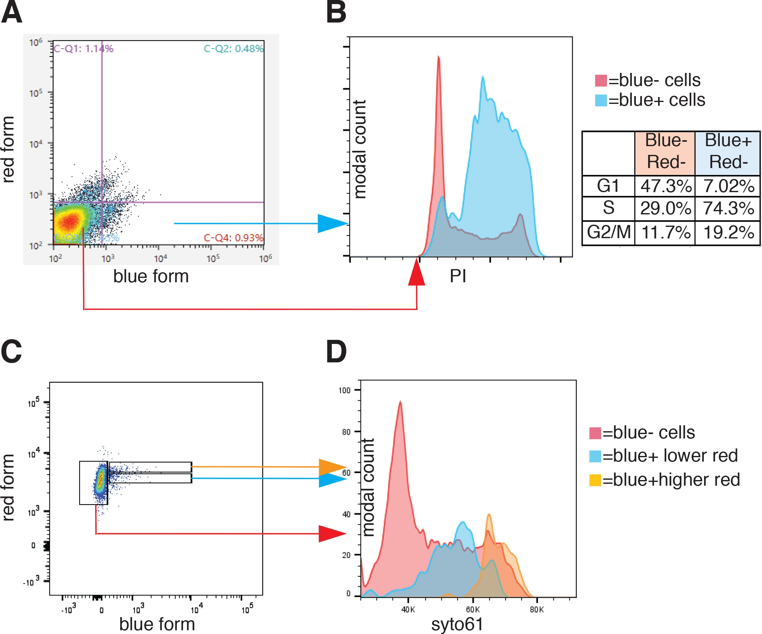 Line 1 protein localization and functional dynamics during the cell cell cycle analysis of ft ai geenschuldenfo Choice Image