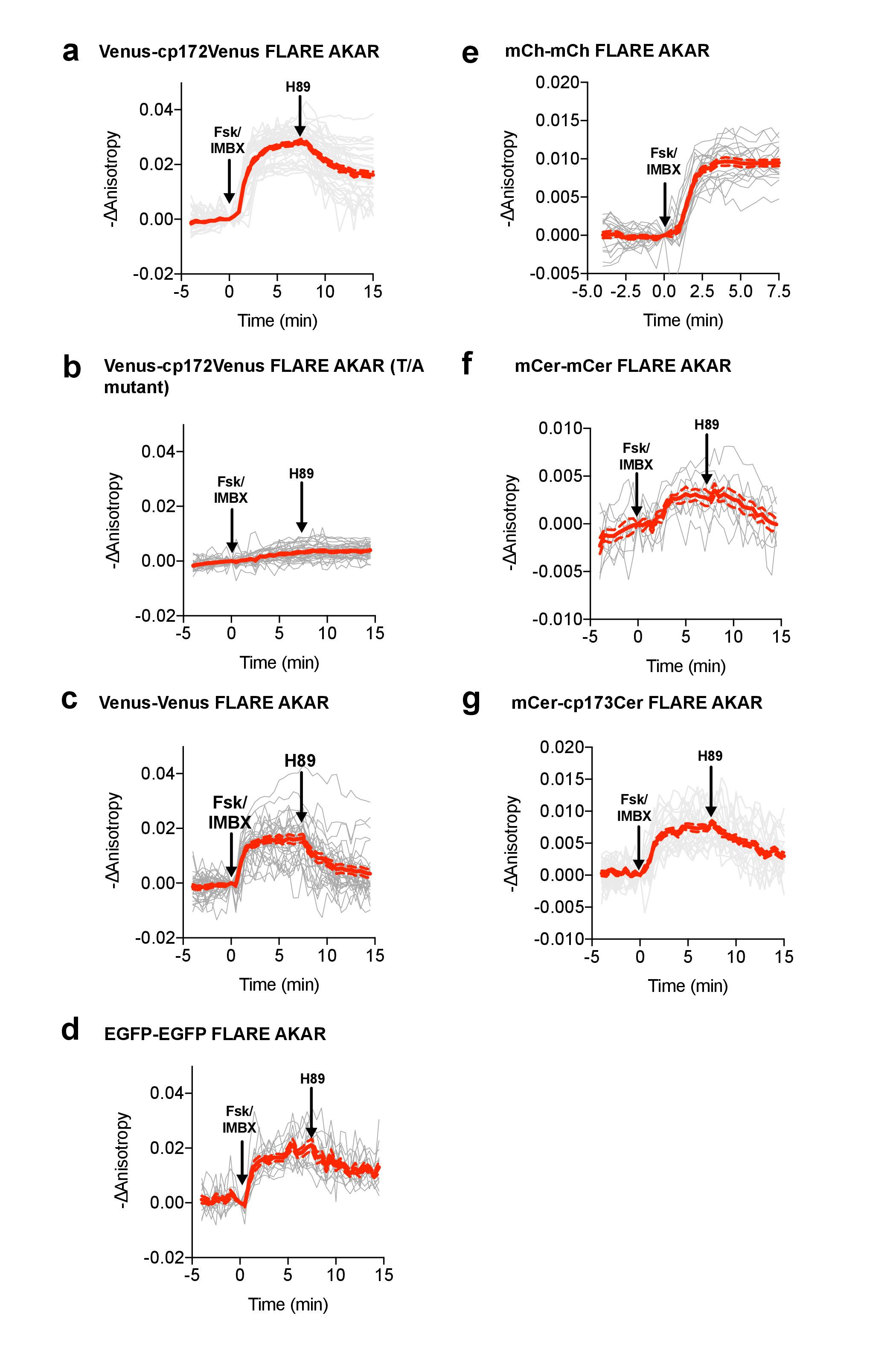 Single-color, ratiometric biosensors for detecting signaling ... on