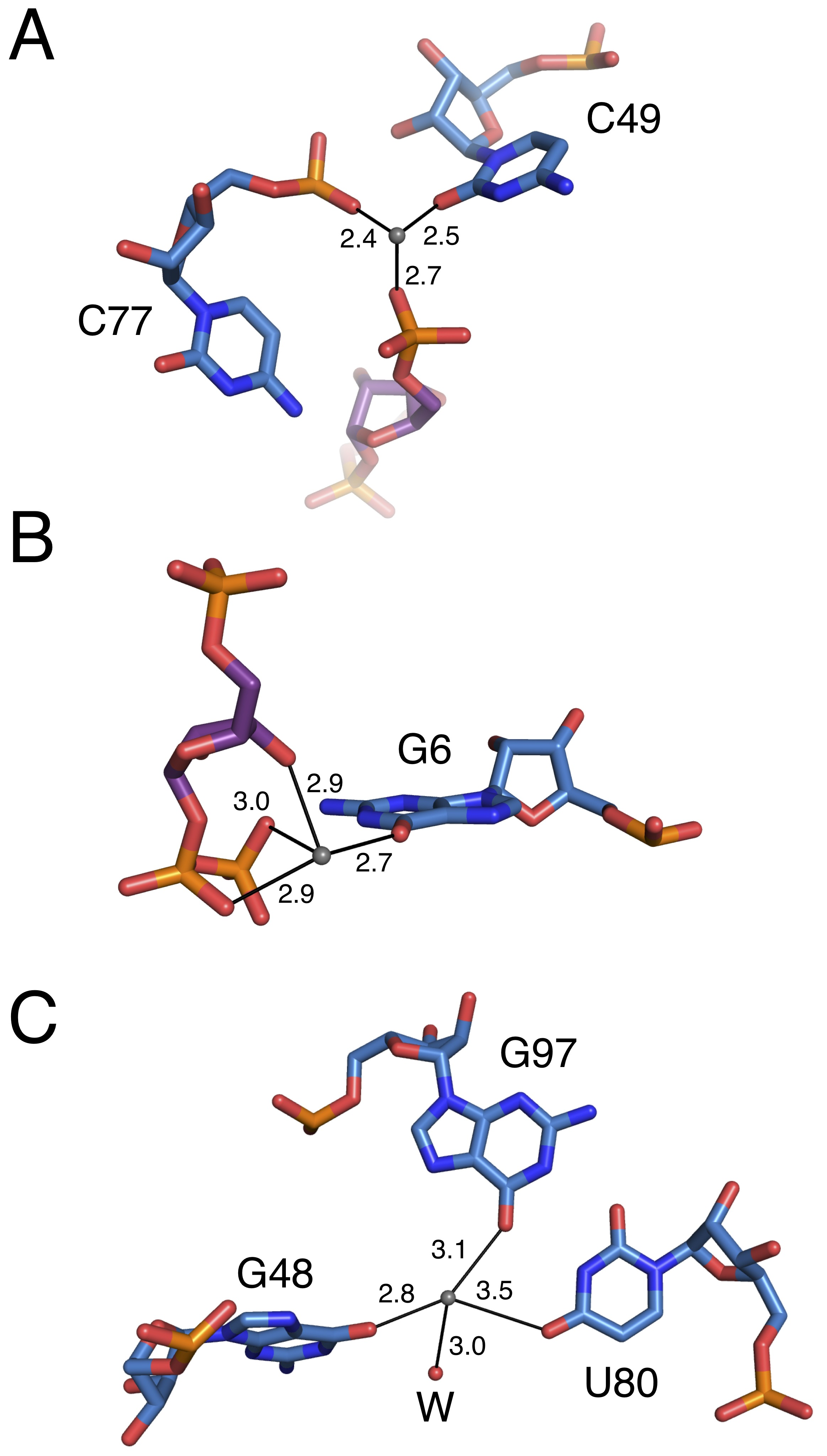 Structures Of Two Aptamers With Differing Ligand Specificity Reveal Figure 2910 Simple Rc Circuit Coordination Metals By Chain A The Prpp Aptamer
