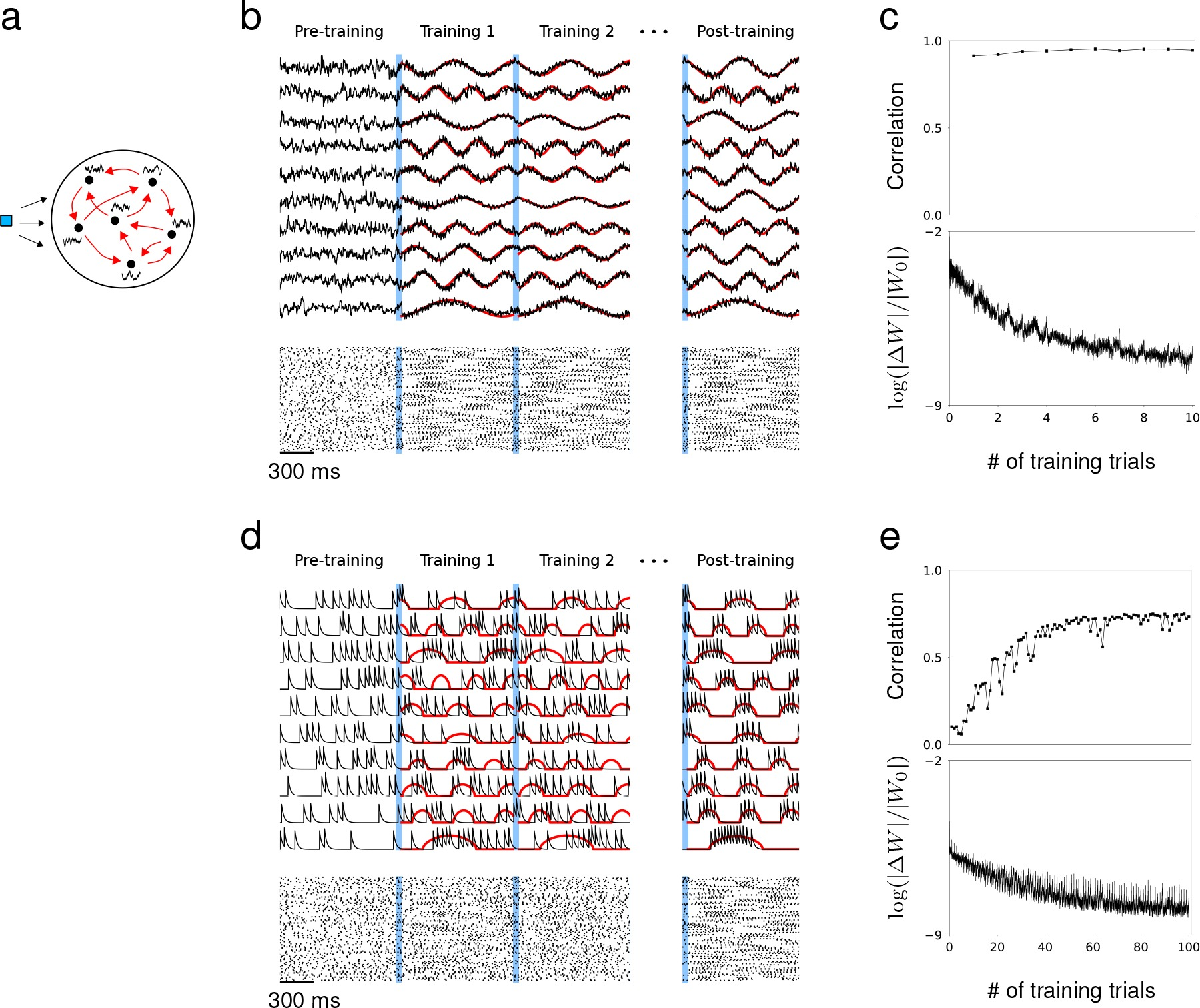3D Scale Monteforte learning recurrent dynamics in spiking networks | elife lens